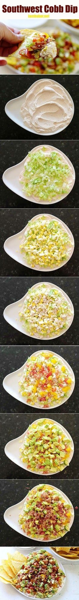 An amazing dip that everyone will love! My GO-TO appetizer!