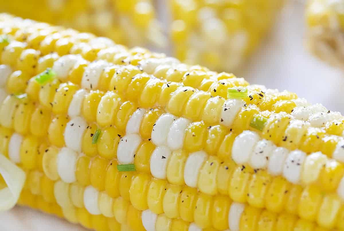 The Perfect Close Up of Grilled, Seasoned Corn on the Cob