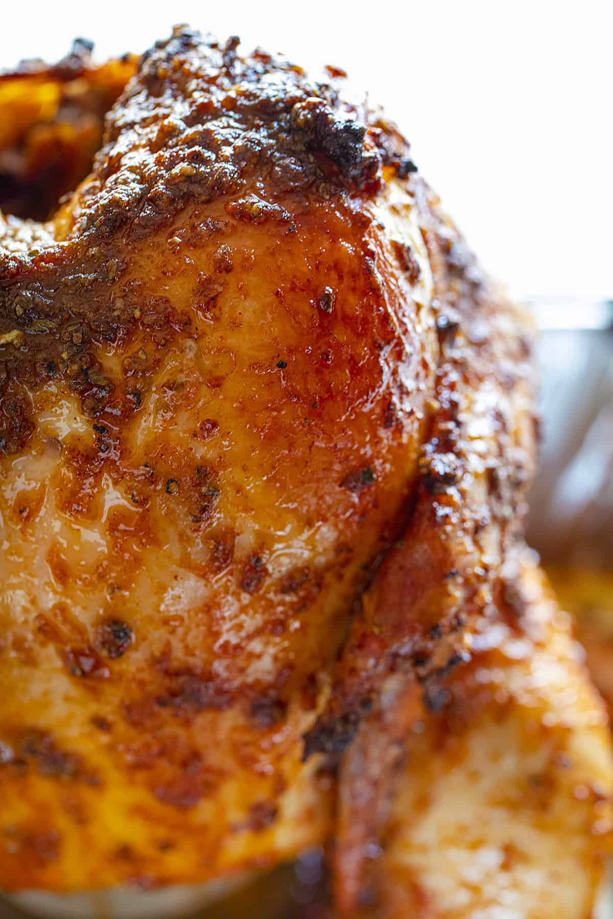 Close Up of Cooked Beer Can Chicken