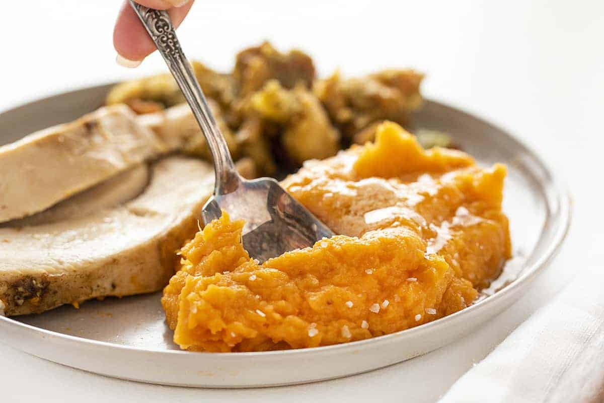 Spoonful of Mashed Sweet Potatoes