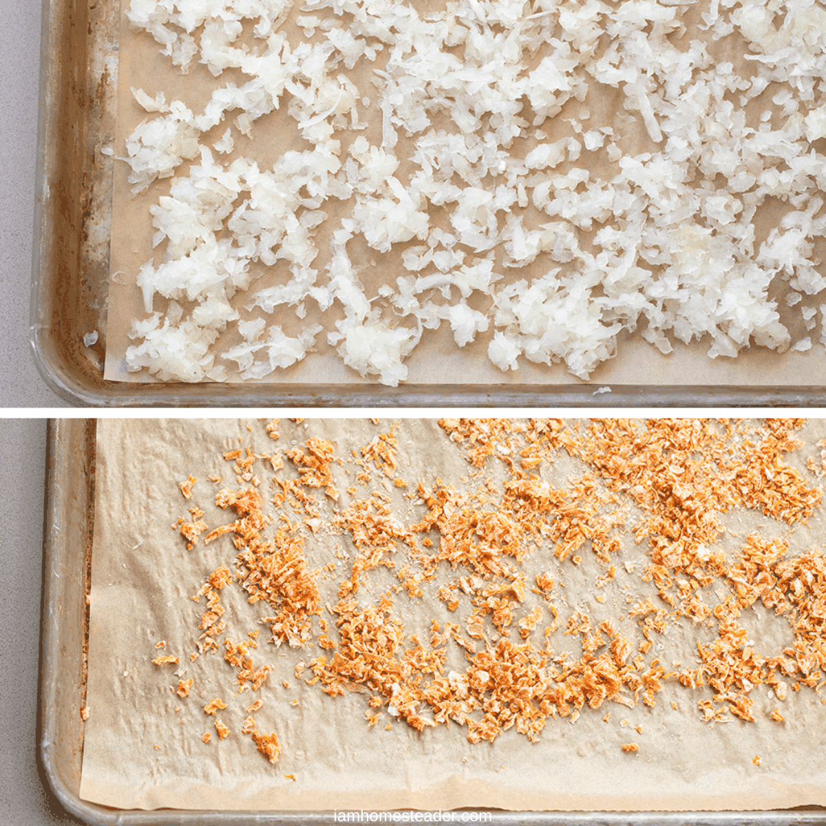 Process images of raw and dried onions on baking sheet