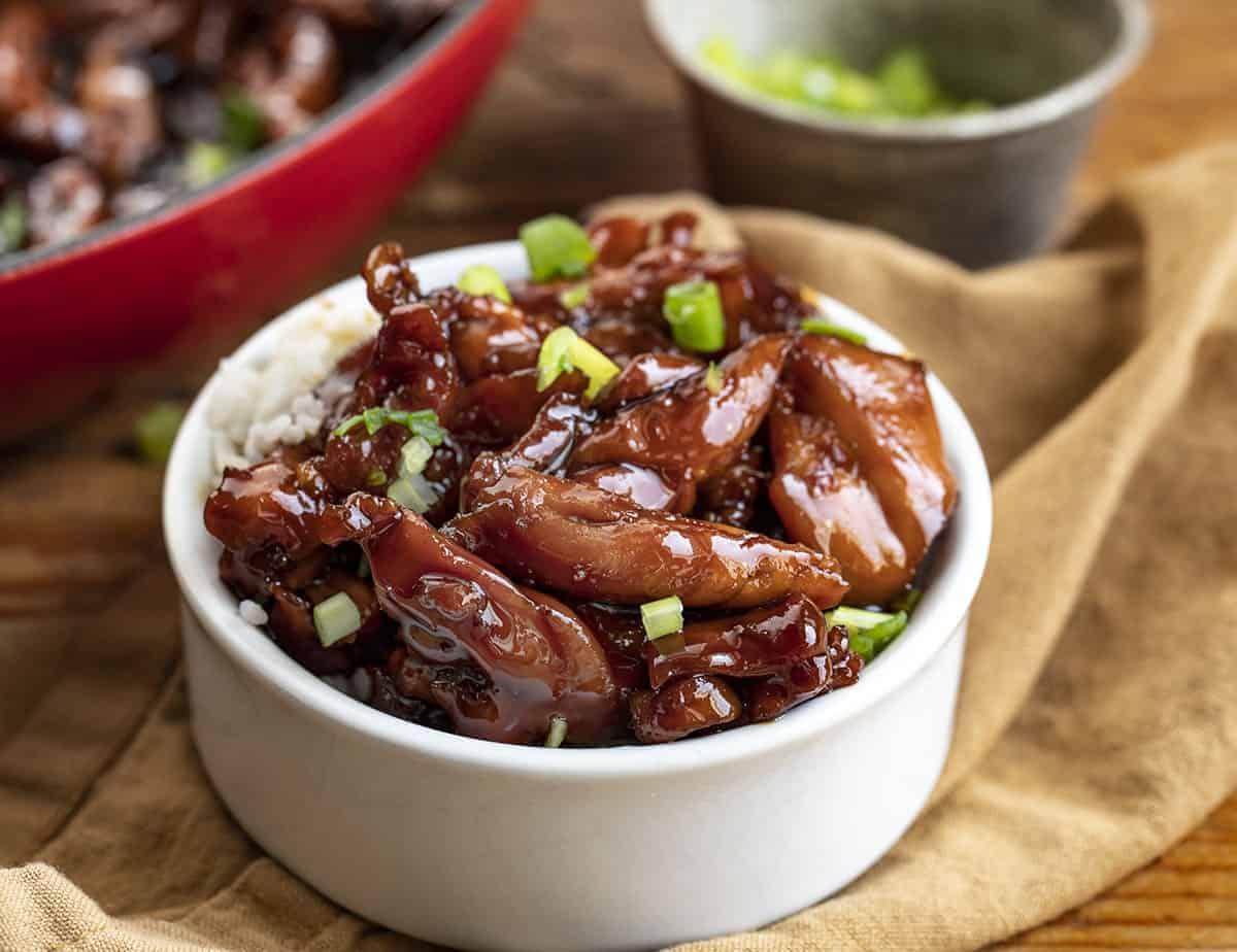 Bowl of Easy Teriyaki Chicken